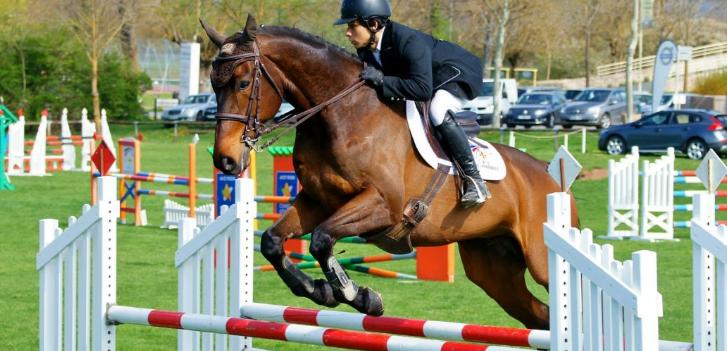 Galops d'équitation : pour tous les âges ?