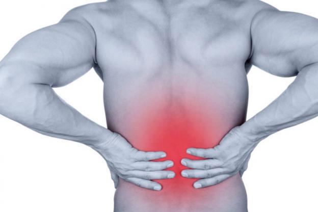 Zoom sur les douleurs dorsales
